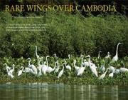 Trip to Prek Toal Bird Sanctuary in Siem Reap